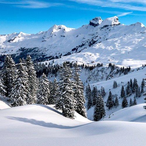 Alimentation sur les pistes de ski